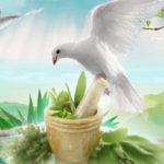Revelaciones Marianas sobre Plantas Medicinales
