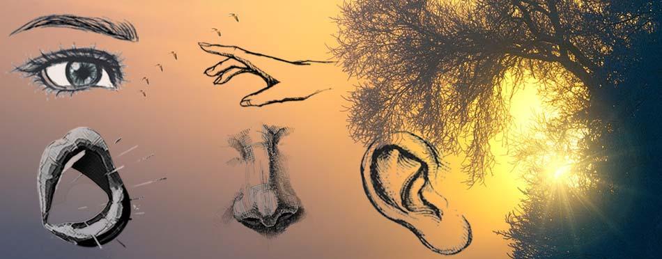 Spiritualizing our 5 senses